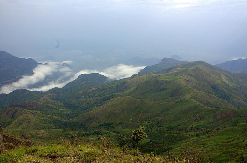 Palani_hills_kodaikanal-2.jpg